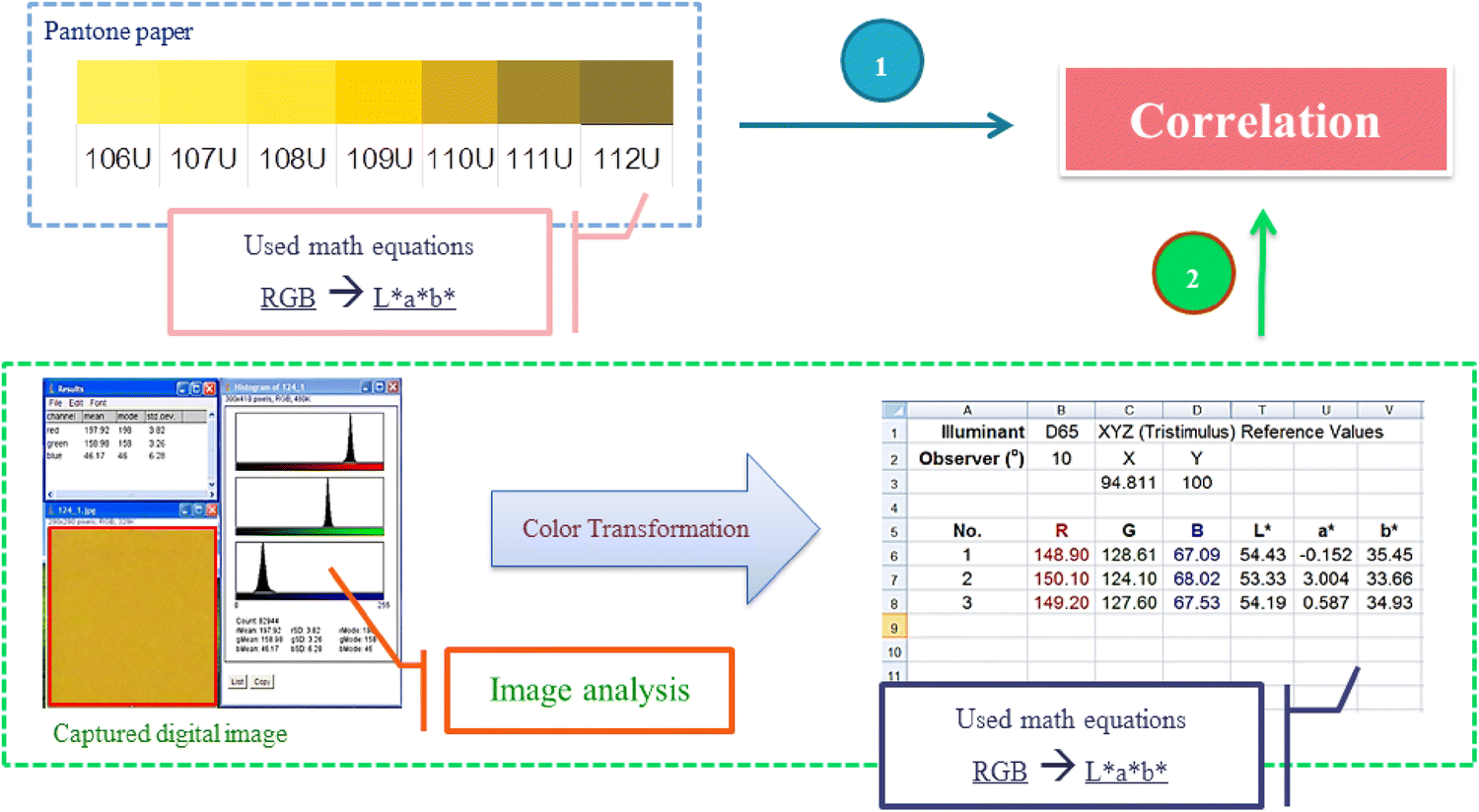 Computer vision system (CVS) for color and surface oil