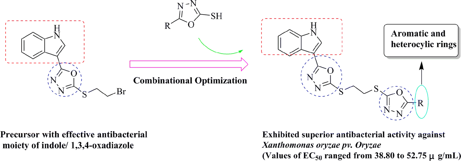 Synthesis of novel indole derivatives containing double 1,3