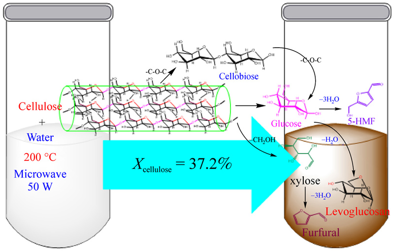 Microwave-assisted catalyst-free hydrolysis of fibrous
