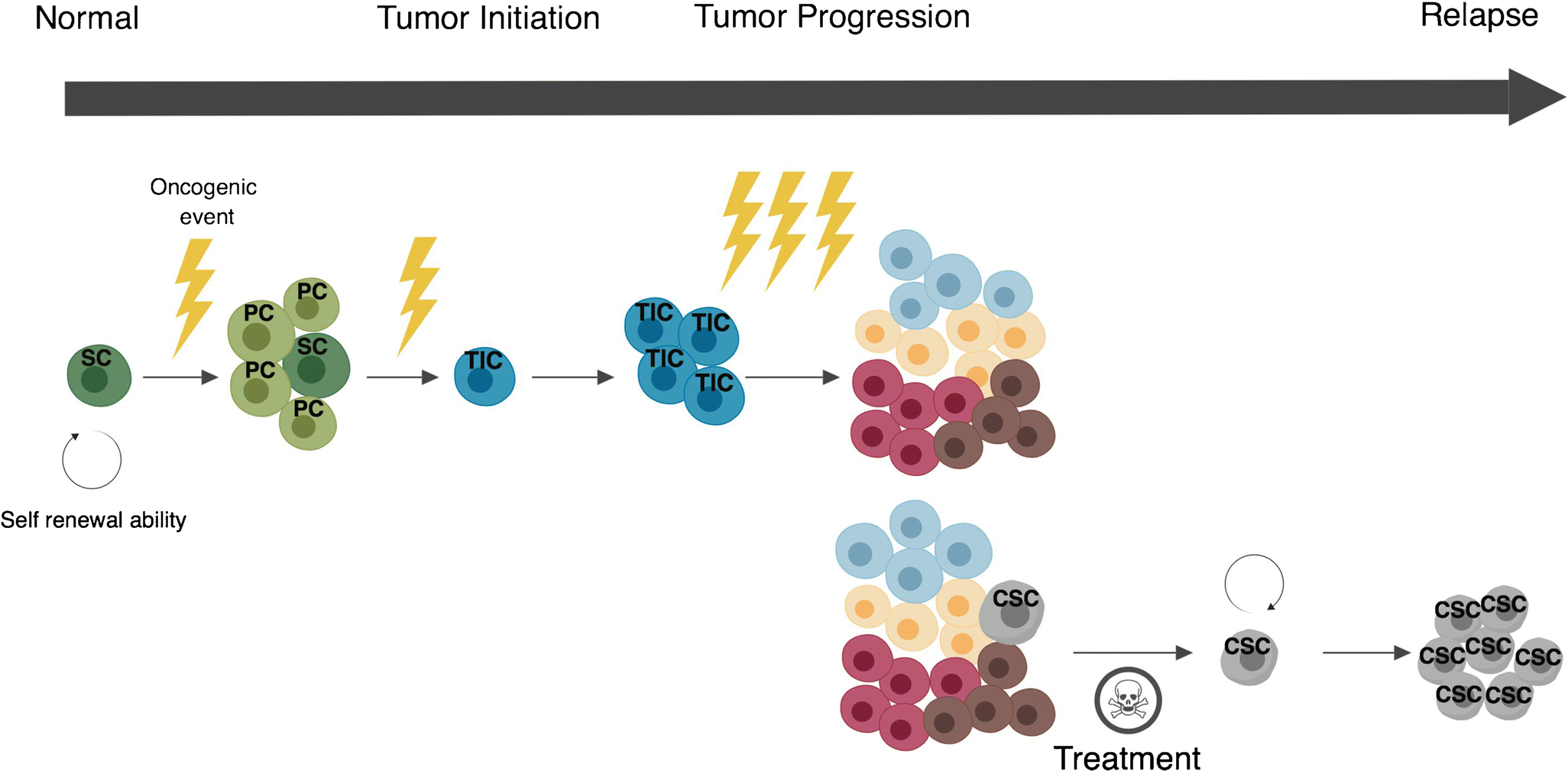 Demystifying the Differences Between Tumor-Initiating Cells