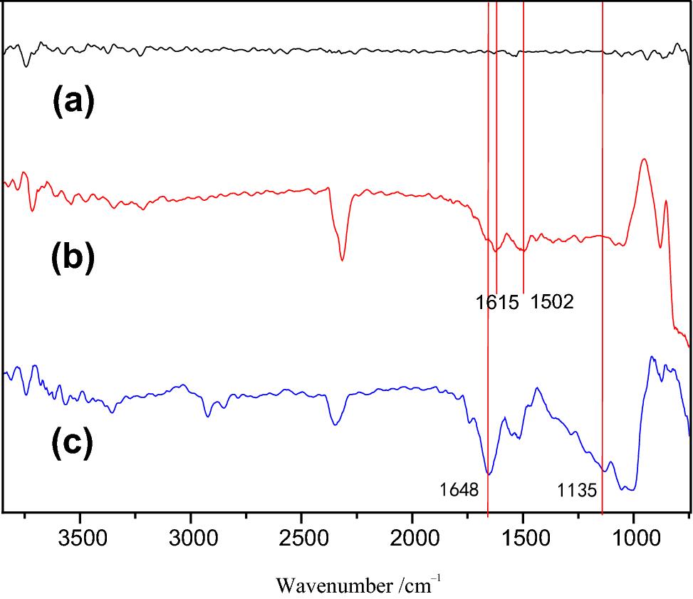 UV irradiation grafting of acrylamide onto dopamine