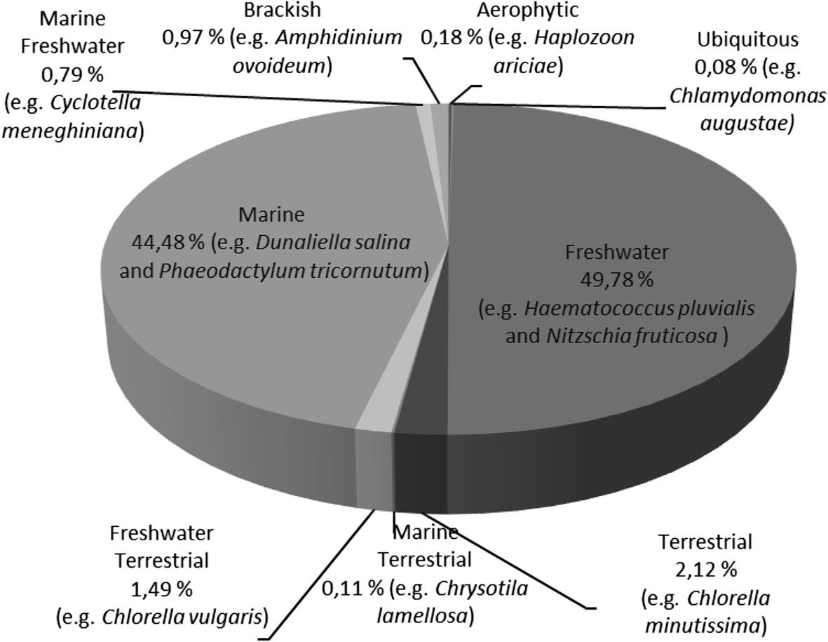 Potential of Microalgae Carotenoids for Industrial Application