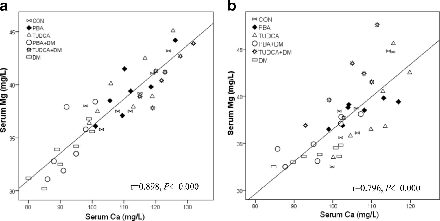 Effect of 4-Phenylbutyric Acid and Tauroursodeoxycholic Acid on