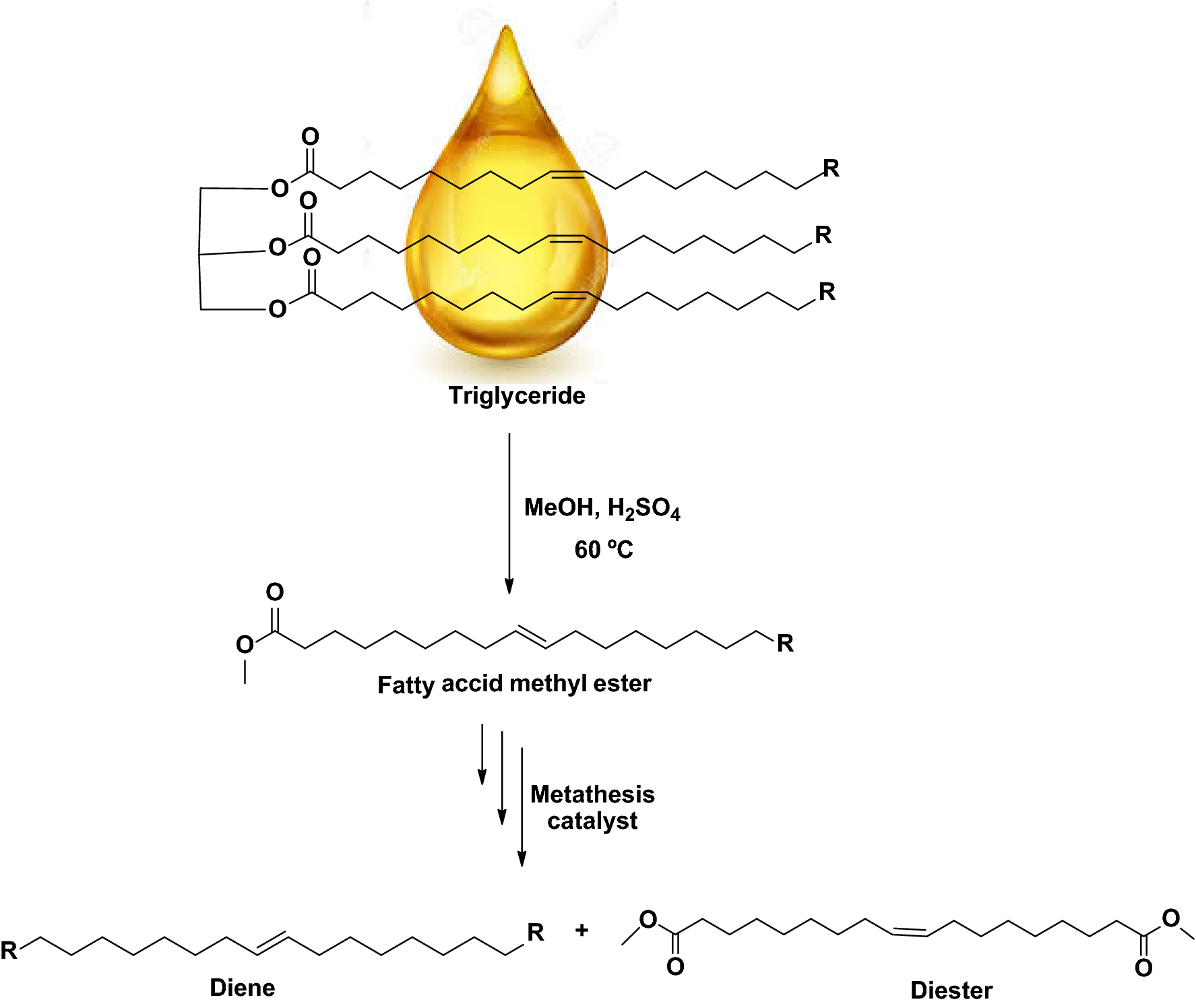 Olefin metathesis of fatty acids and vegetable oils