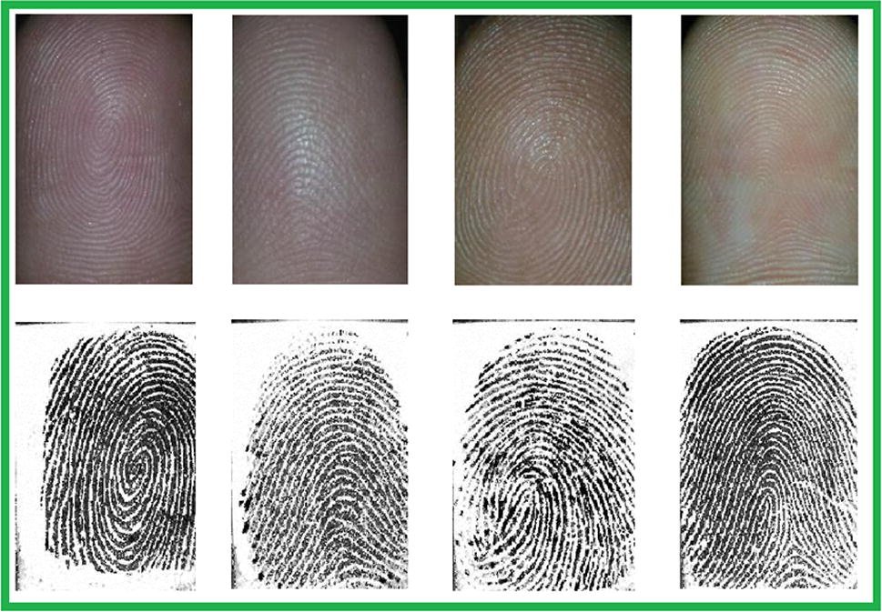 Towards smartphone-based touchless fingerprint recognition