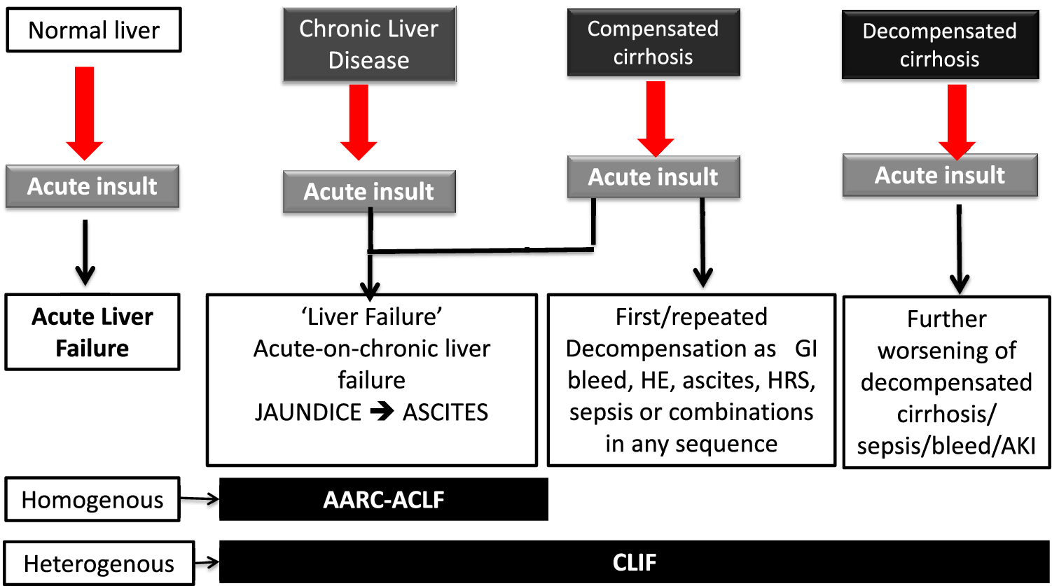 Acute-on-chronic liver failure: consensus recommendations of the