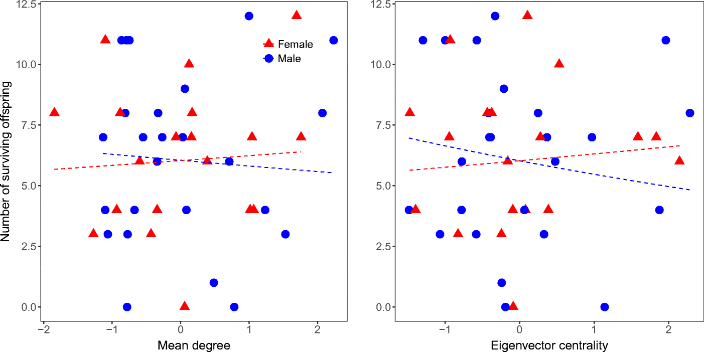 Foraging Performance, Prosociality, and Kin Presence Do Not
