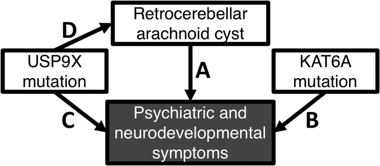 Neurodevelopmental and Psychiatric Symptoms in Patients with a Cyst