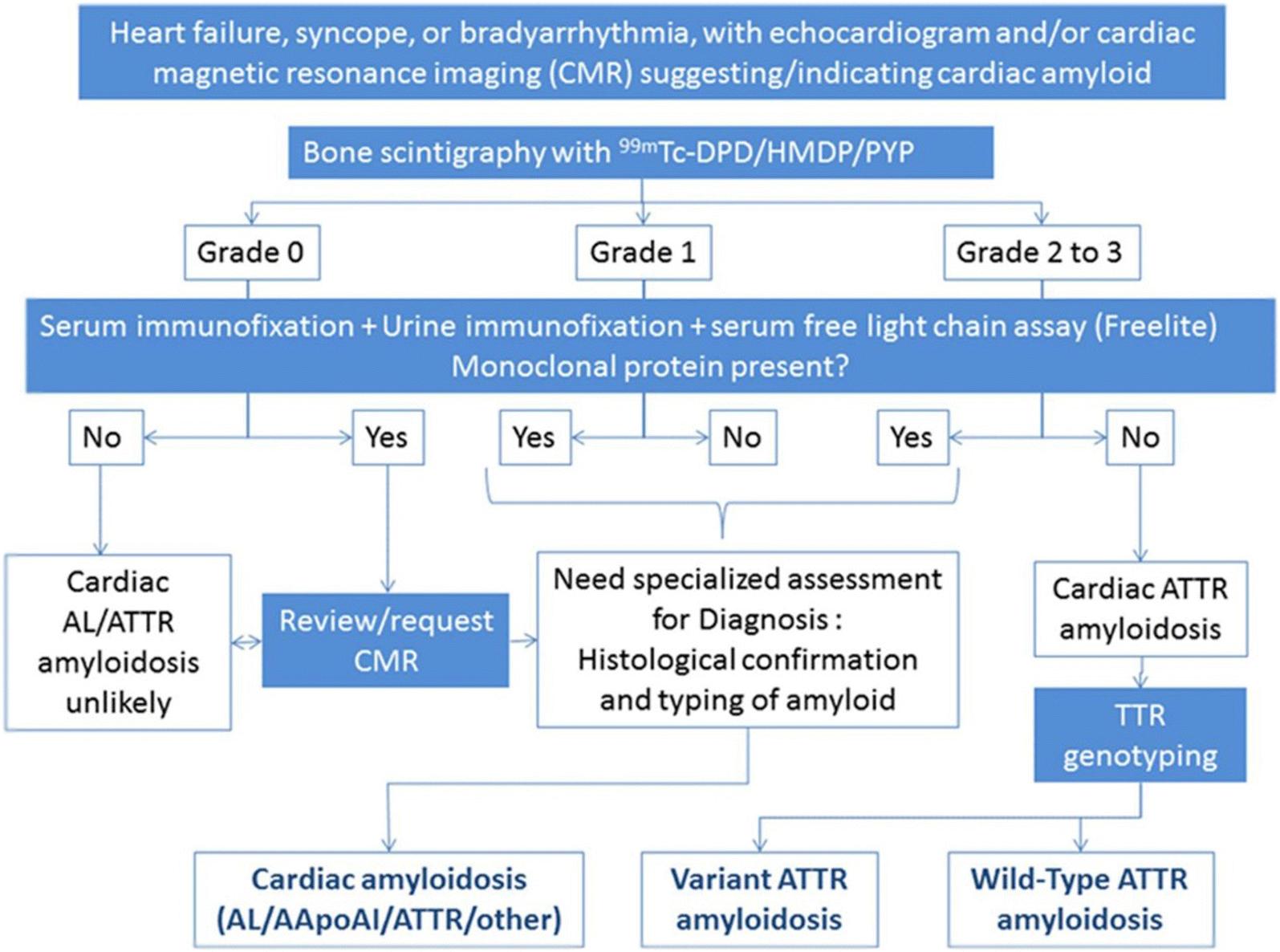 ASNC/AHA/ASE/EANM/HFSA/ISA/SCMR/SNMMI expert consensus