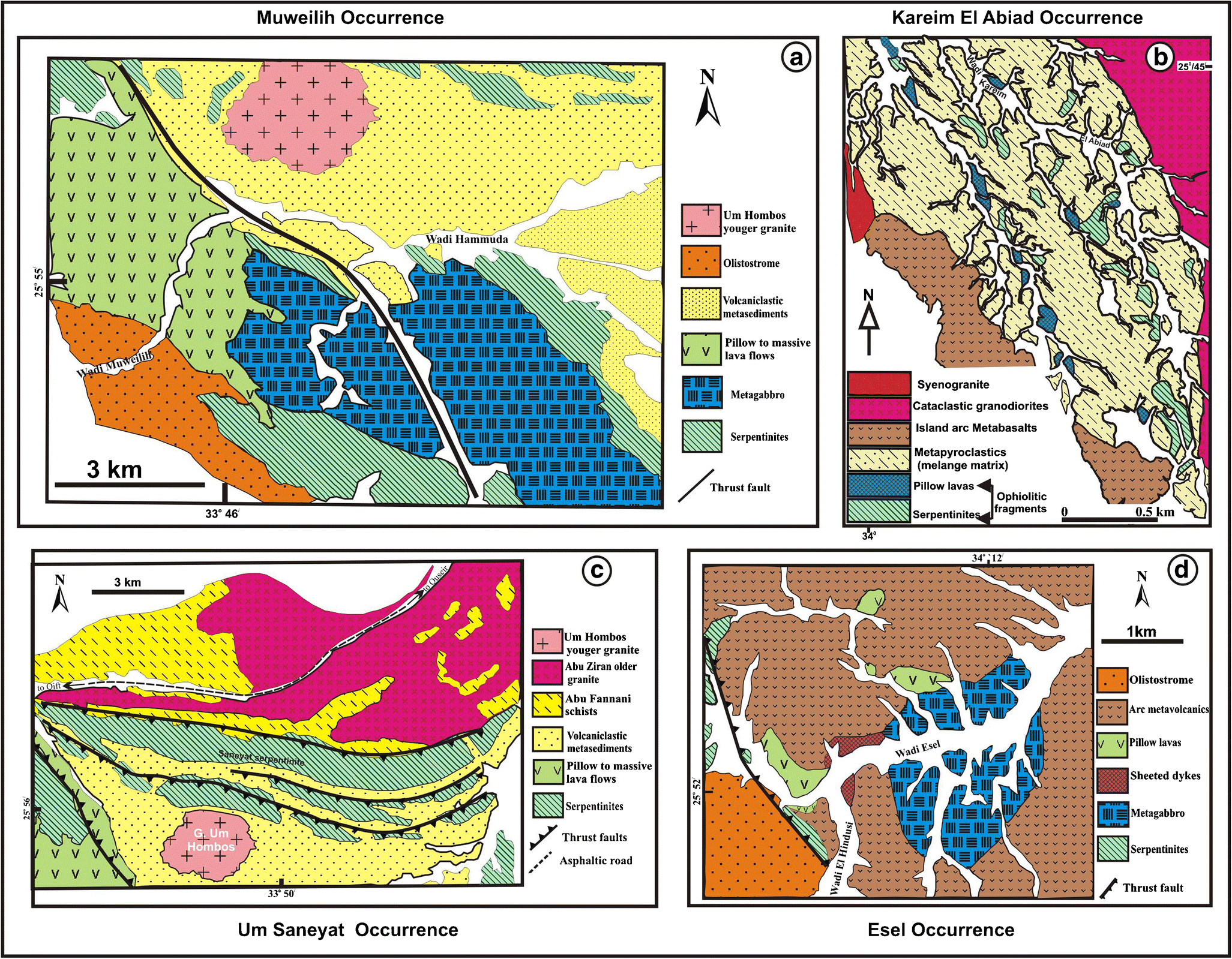 Classification of the Neoproterozoic ophiolites of the