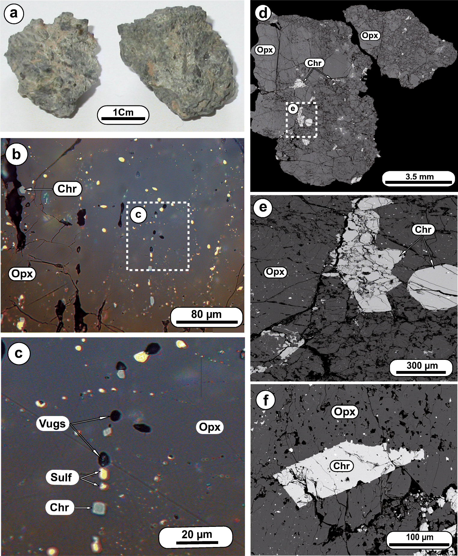 Petrology, mineralogy, and geochemistry of the olivine diogenite NWA