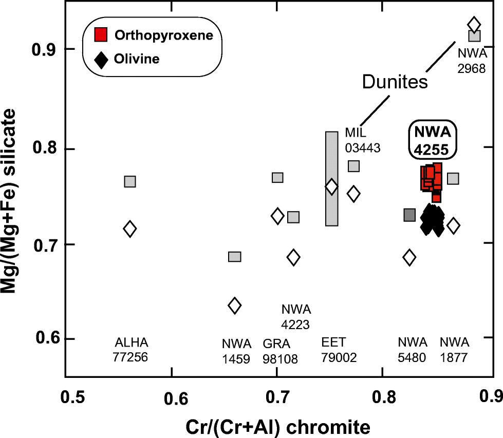 Petrology, mineralogy, and geochemistry of the olivine