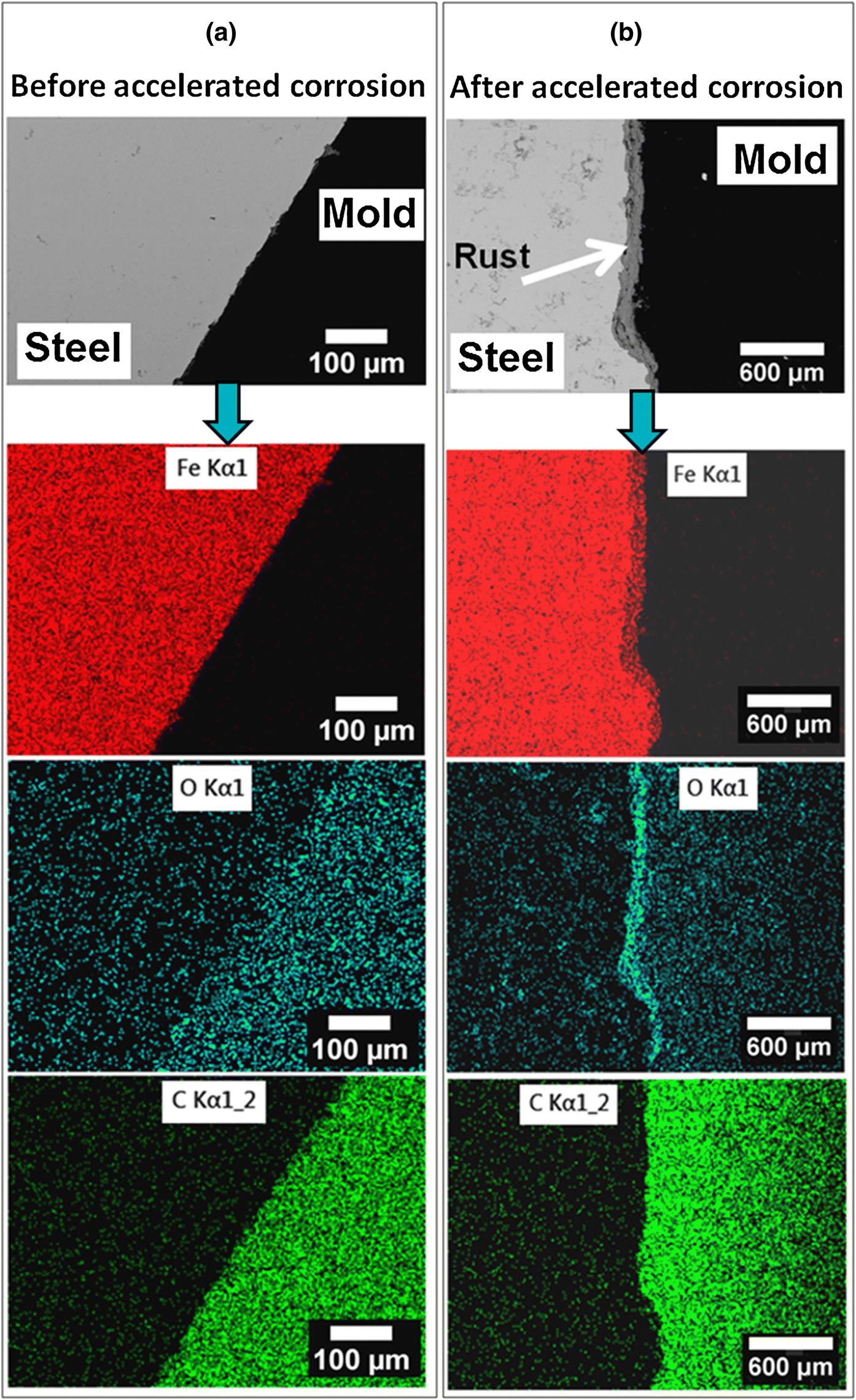 Effect of Microstructures on the Corrosion Behavior of