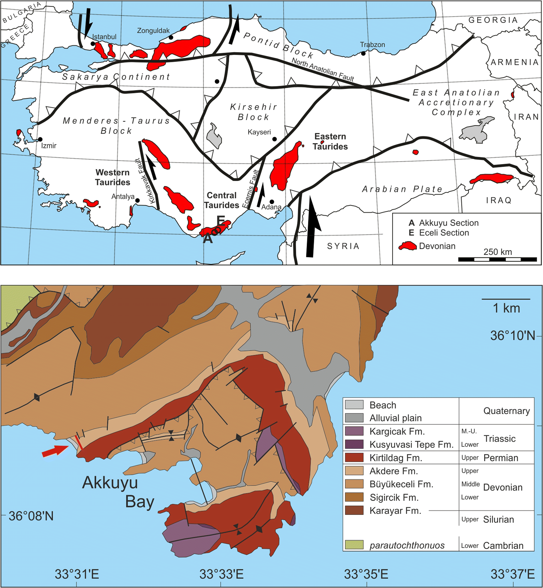 Distribution and palaeoecology of charophyte floras in Devonian