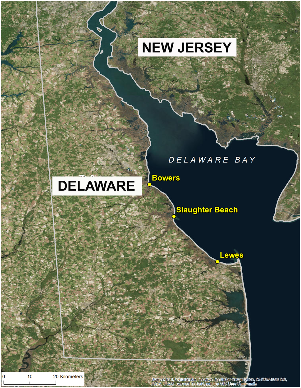 Bacteriophages Against Pathogenic Vibrios in Delaware Bay ...