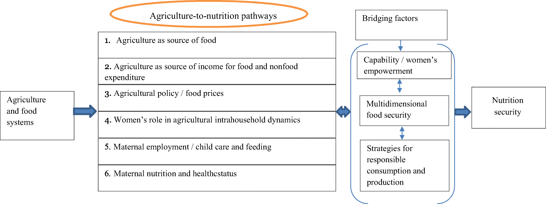 Pathways from agriculture-to-nutrition in India: implications for