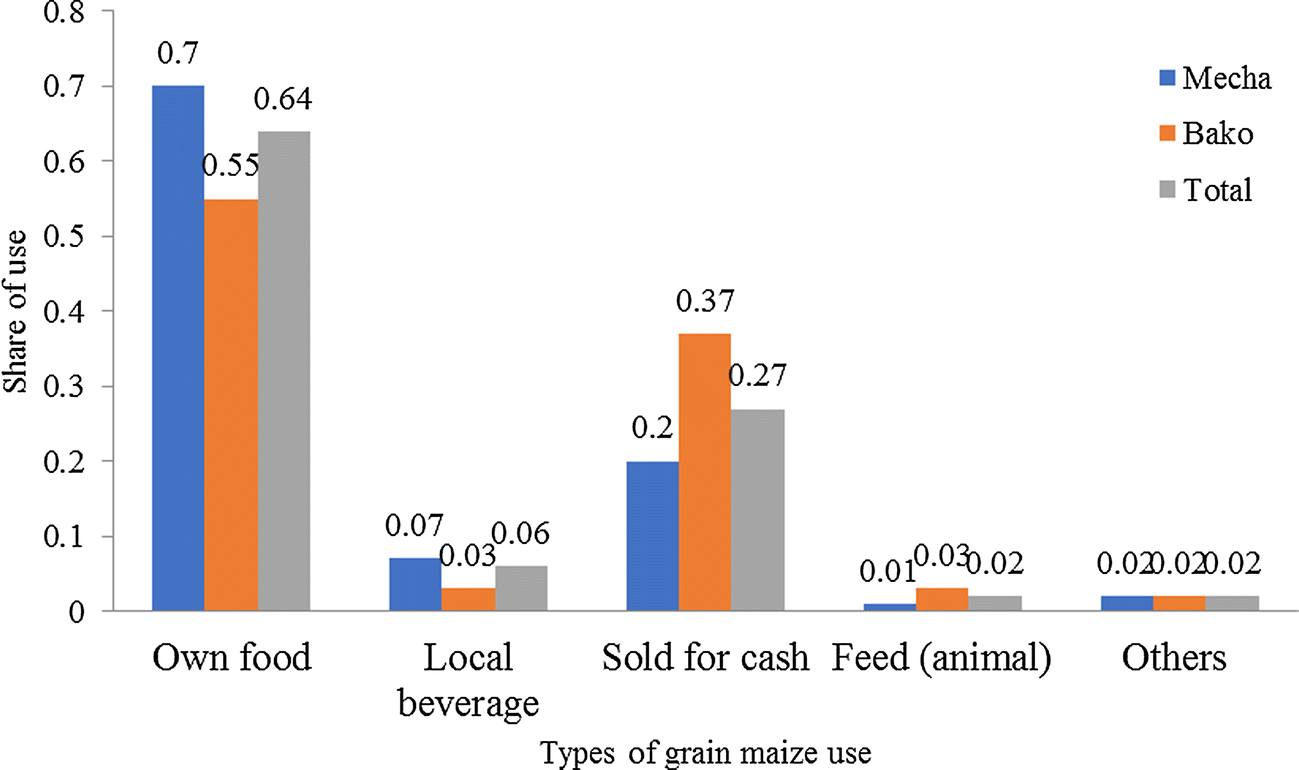 Analysis of maize biomass use in Ethiopia and its implications for