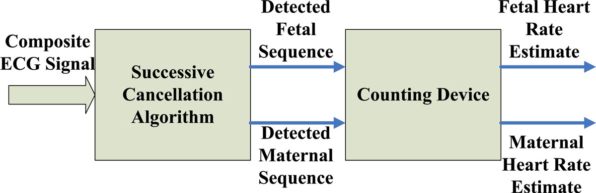 Detection and Processing Techniques of FECG Signal for Fetal