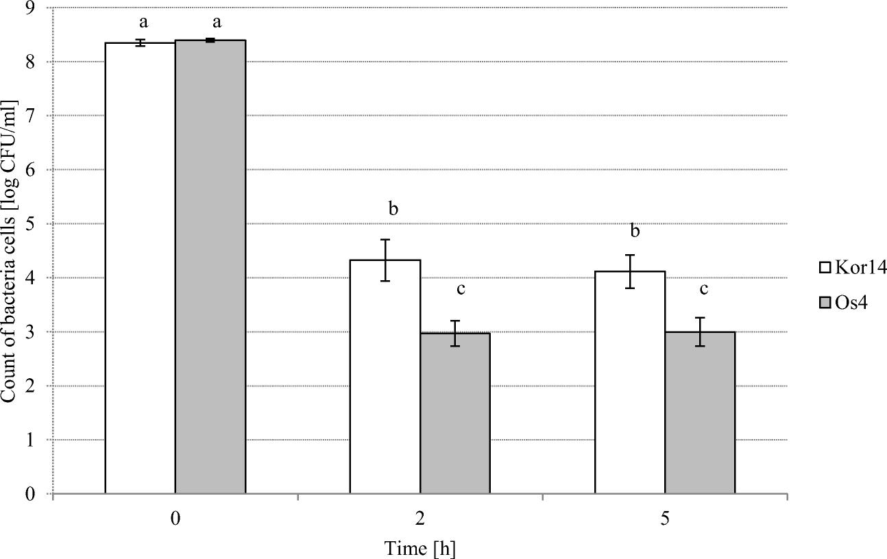 Lactobacillus plantarum Strains Isolated from Polish