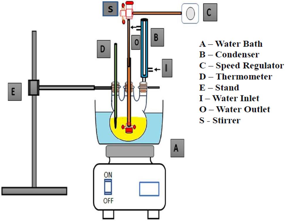 Modified Malleus malleus Shells for Biodiesel Production