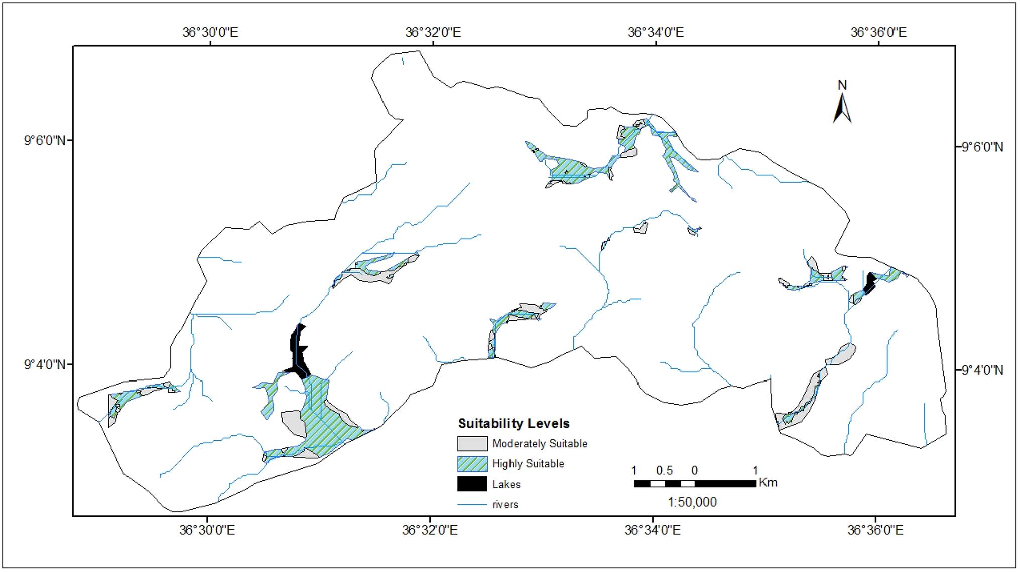 Integrated remote sensing–GIS analysis of urban wetland