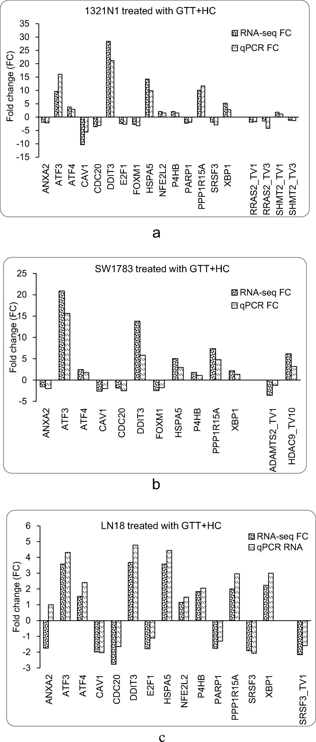 Transcriptome analysis reveals the molecular mechanisms of