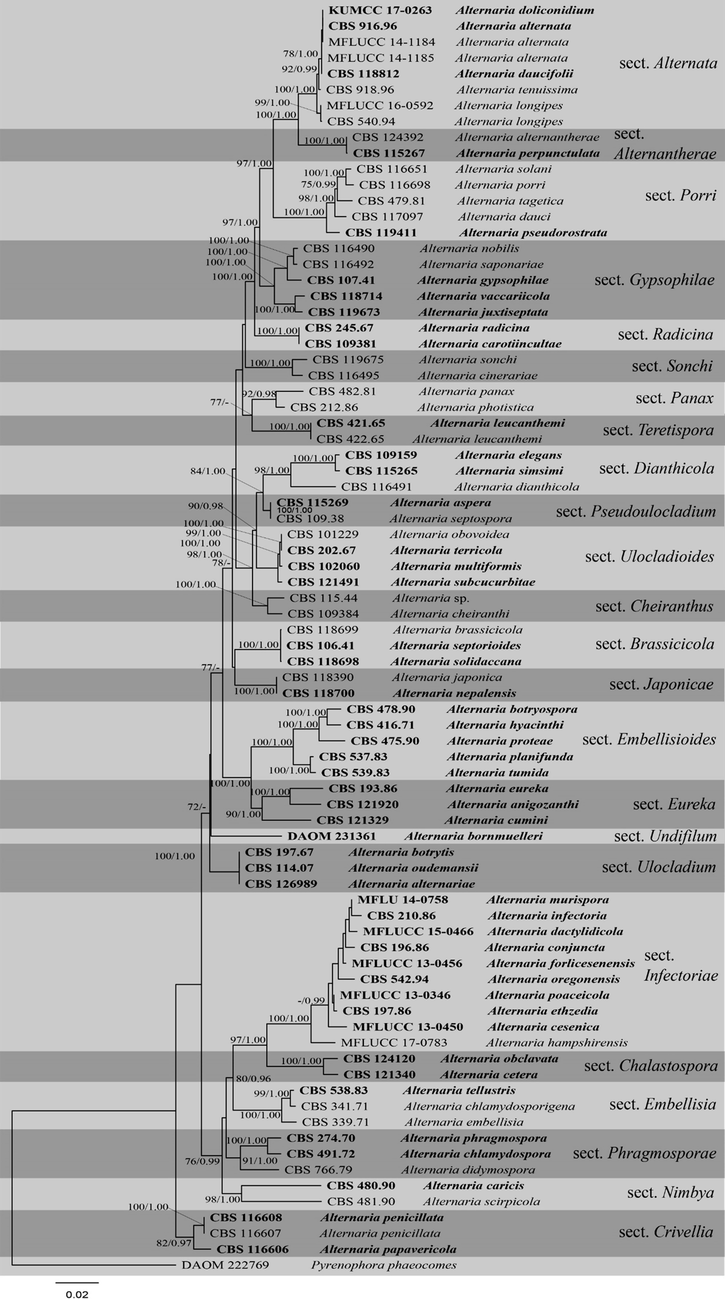 One stop shop II: taxonomic update with molecular phylogeny