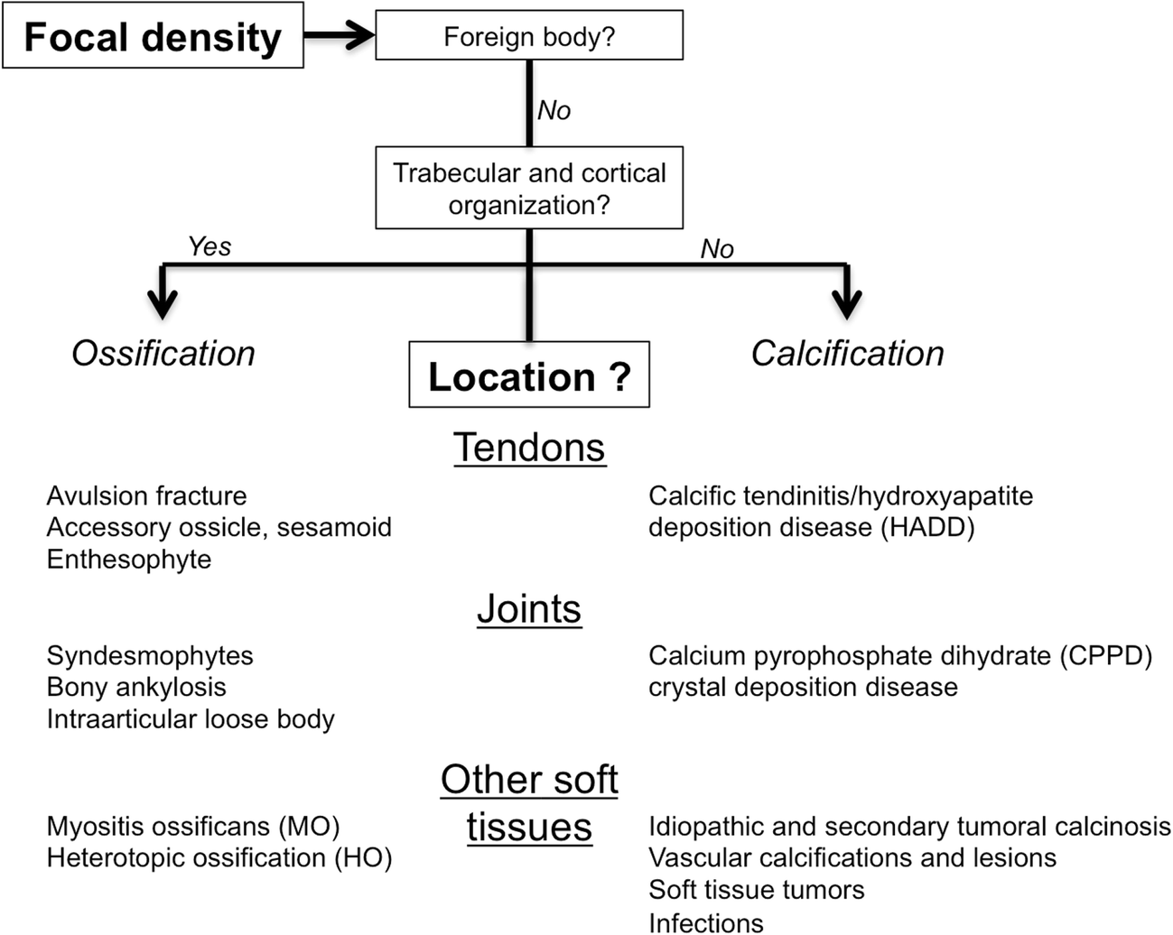 Radiological identification and analysis of soft tissue