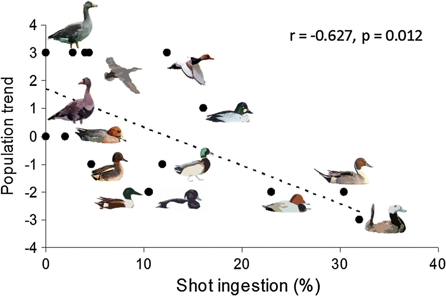 Effects of lead from ammunition on birds and other wildlife