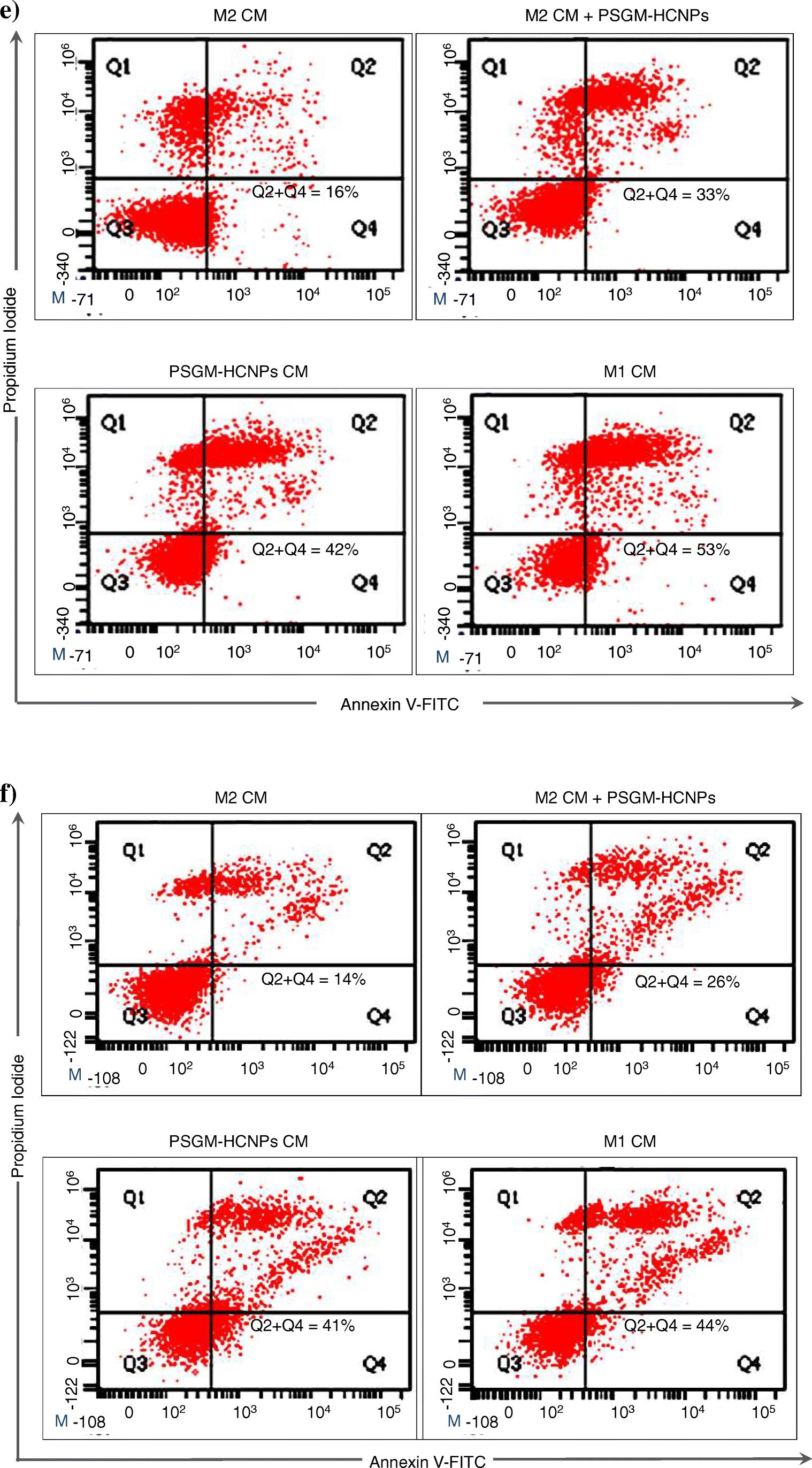 Pro-inflammatory macrophage polarization enhances the anti