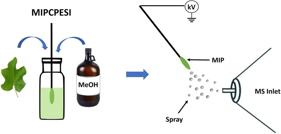Molecularly Imprinted Polymer-Coated Probe Electrospray Ionization
