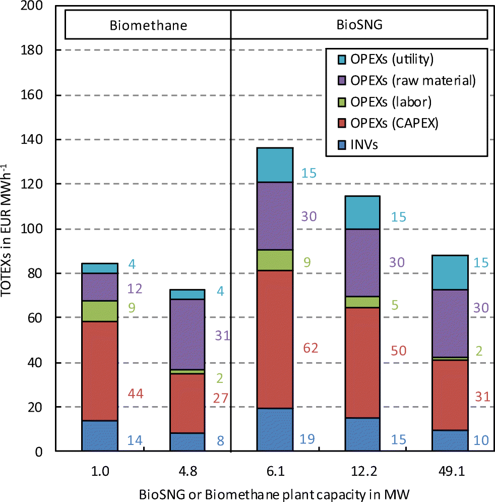 Techno-economic assessment of biomass-based natural gas substitutes