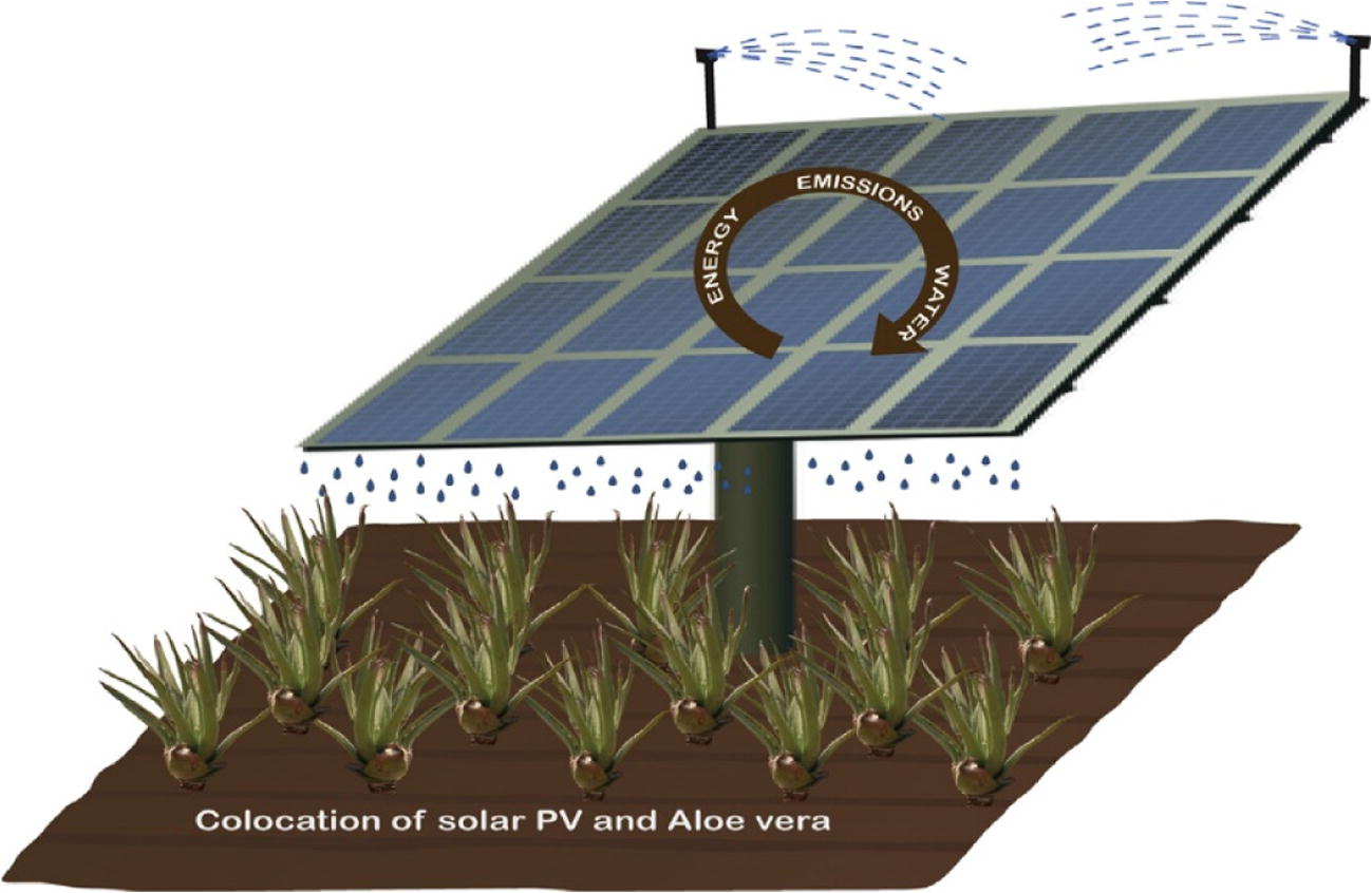 Agrophotovoltaic systems: applications, challenges, and