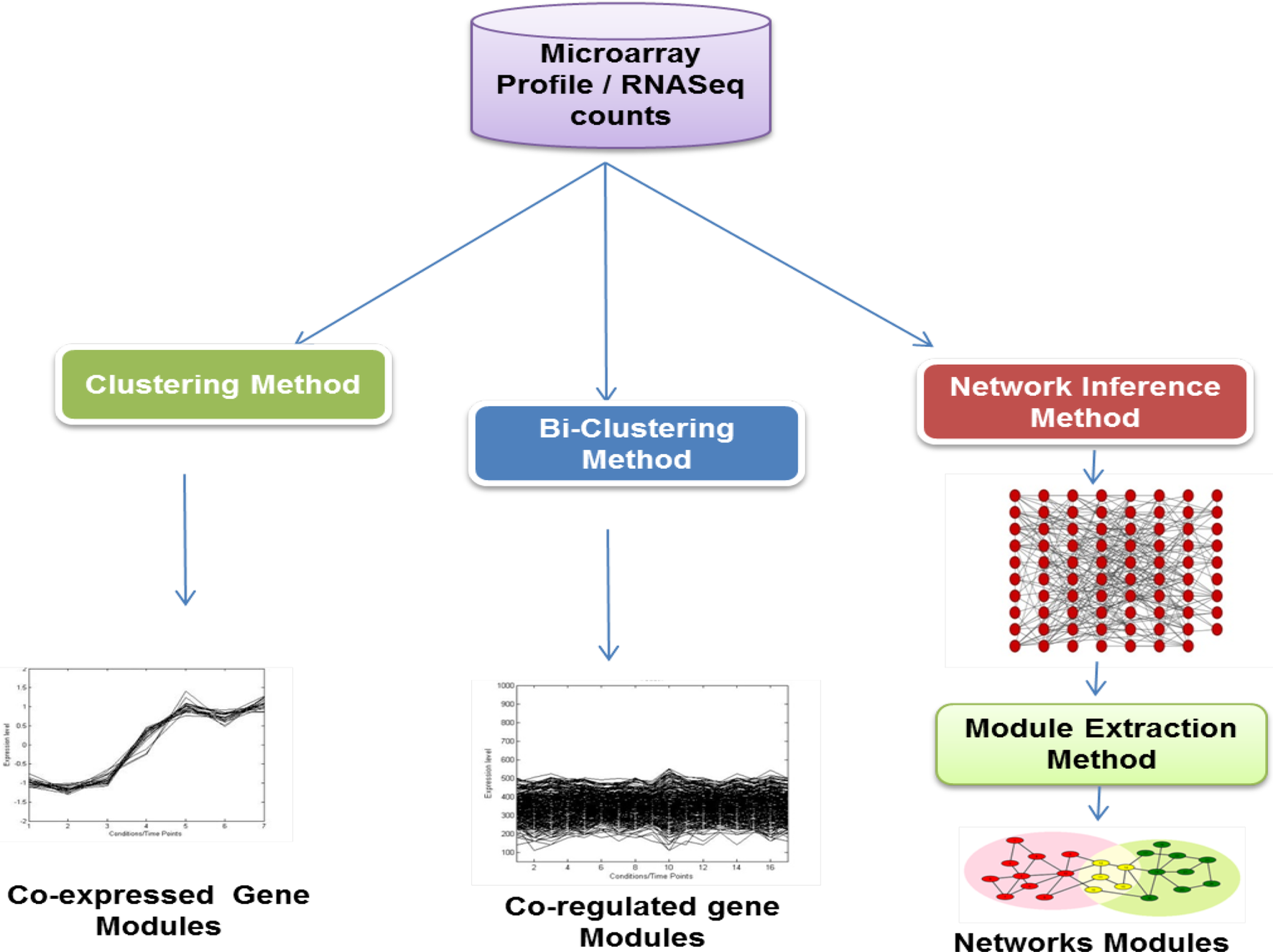 Qualitative assessment of functional module detectors on microarray