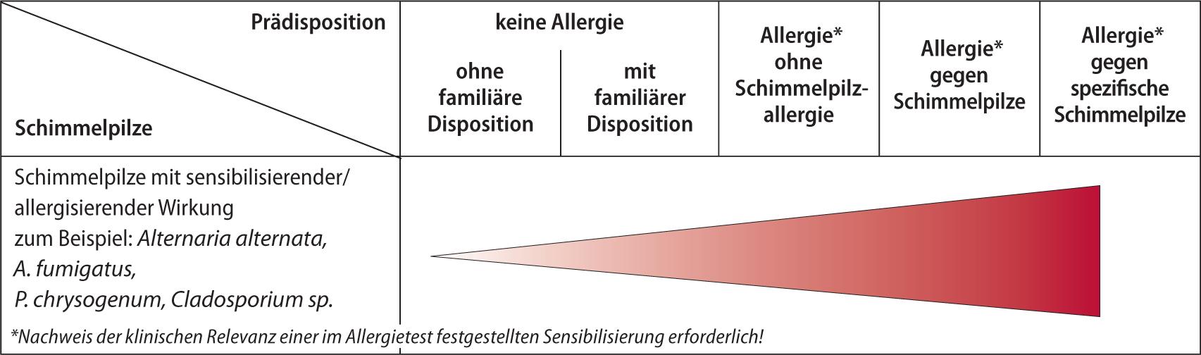 Kurzfassung der AWMF-Leitlinie medizinisch klinische Diagnostik bei ...