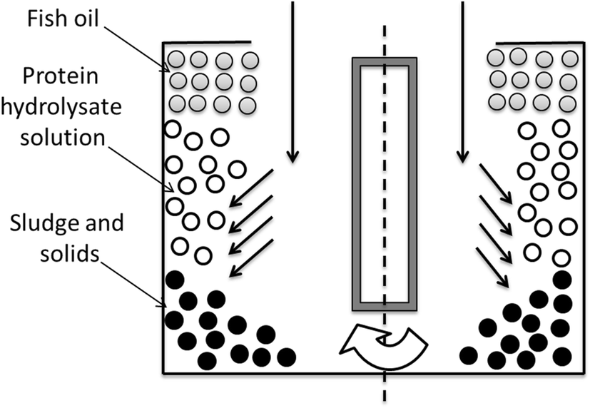 Production of fish protein hydrolysates step by step