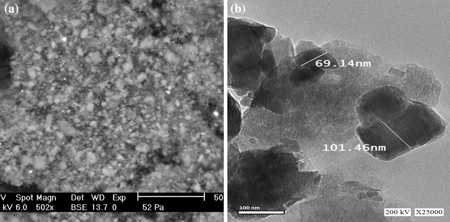 Nano-structured natural bentonite clay coated by polyvinyl