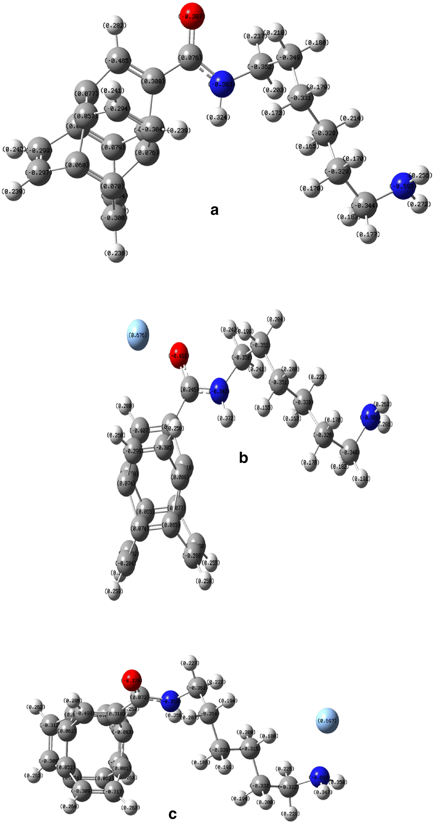 A DFT study on N-6-amino-hexylamide functionalized single