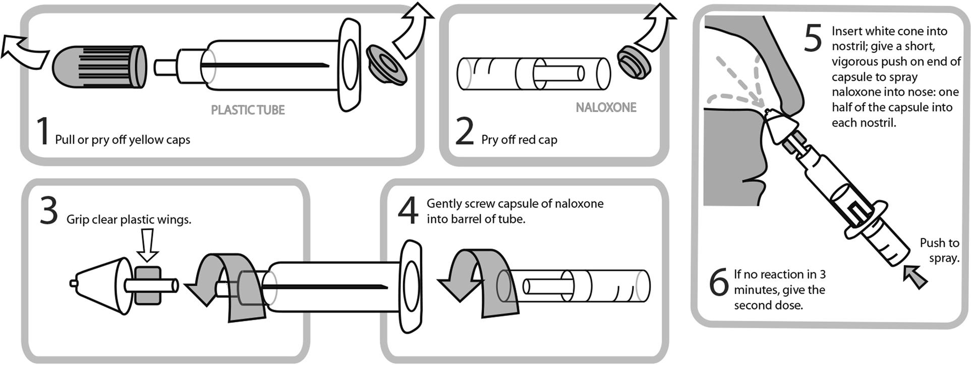 Comparative Human Factors Evaluation of Two Nasal Naloxone