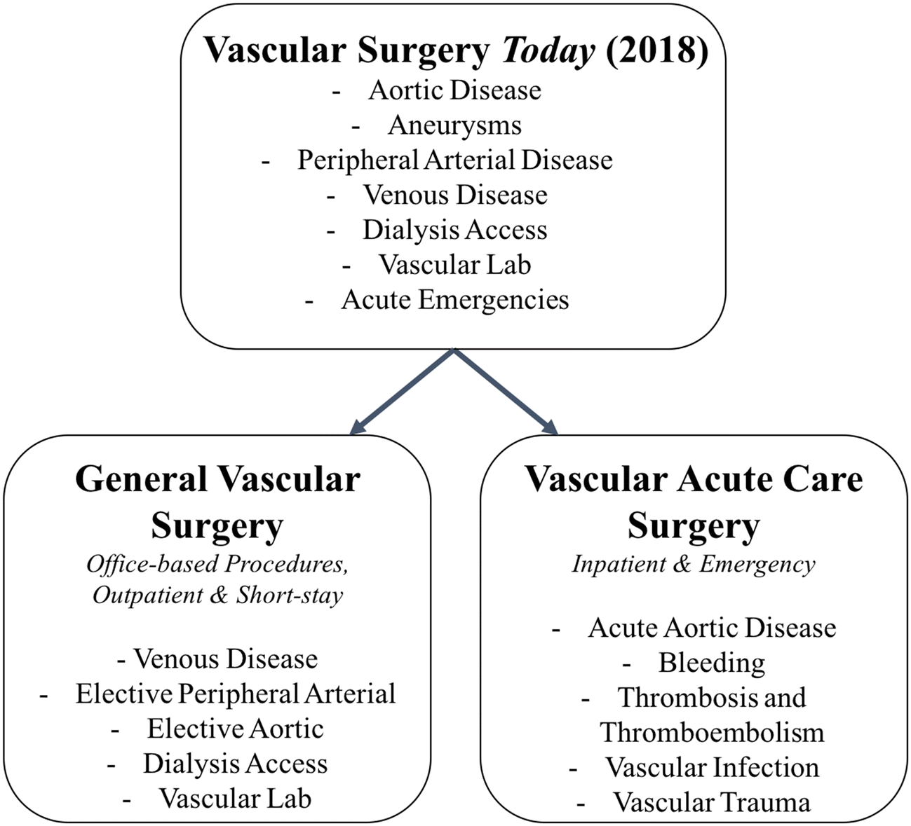 Vascular Acute Care Surgery (VACS) Services: A New Model for