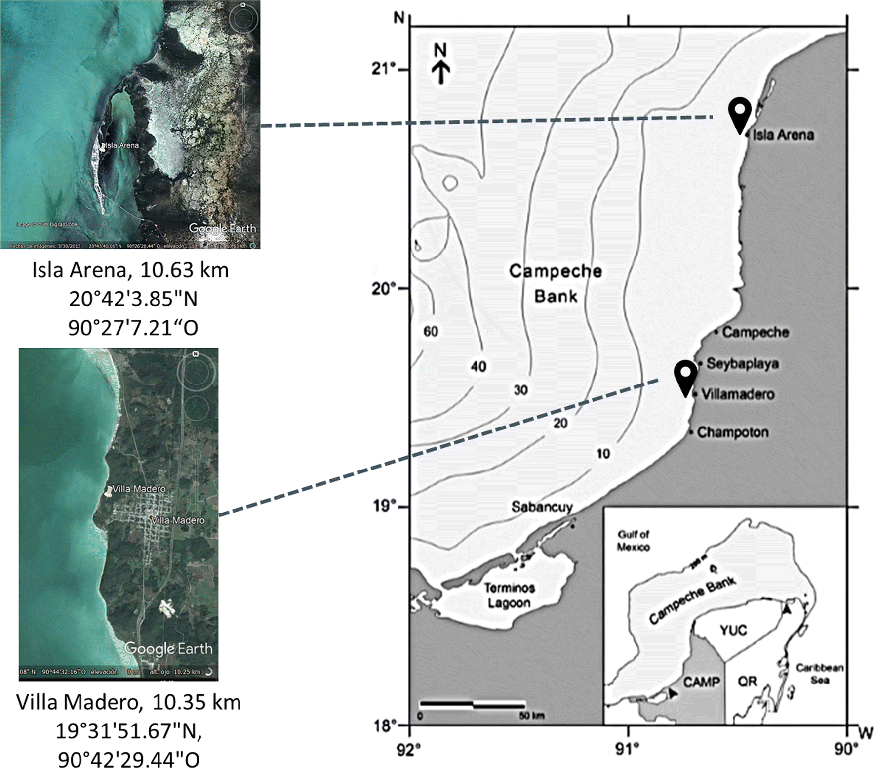 Decision Making in the Campeche Maya Octopus fishery in two