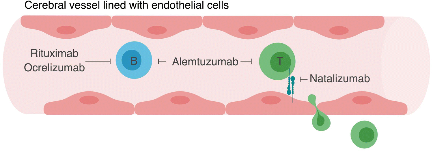 Established and Emerging Immunological Complications of
