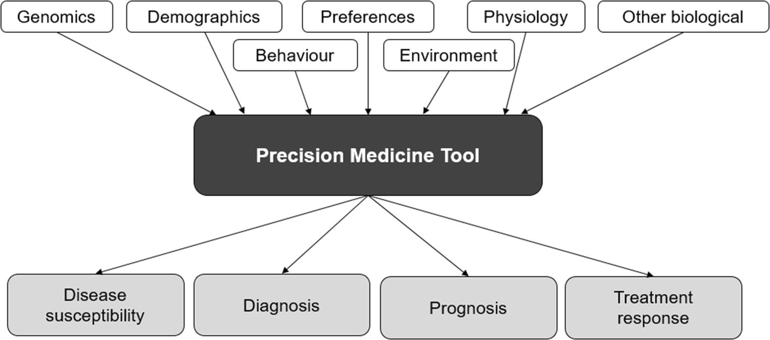 The Future of Precision Medicine: Potential Impacts for Health