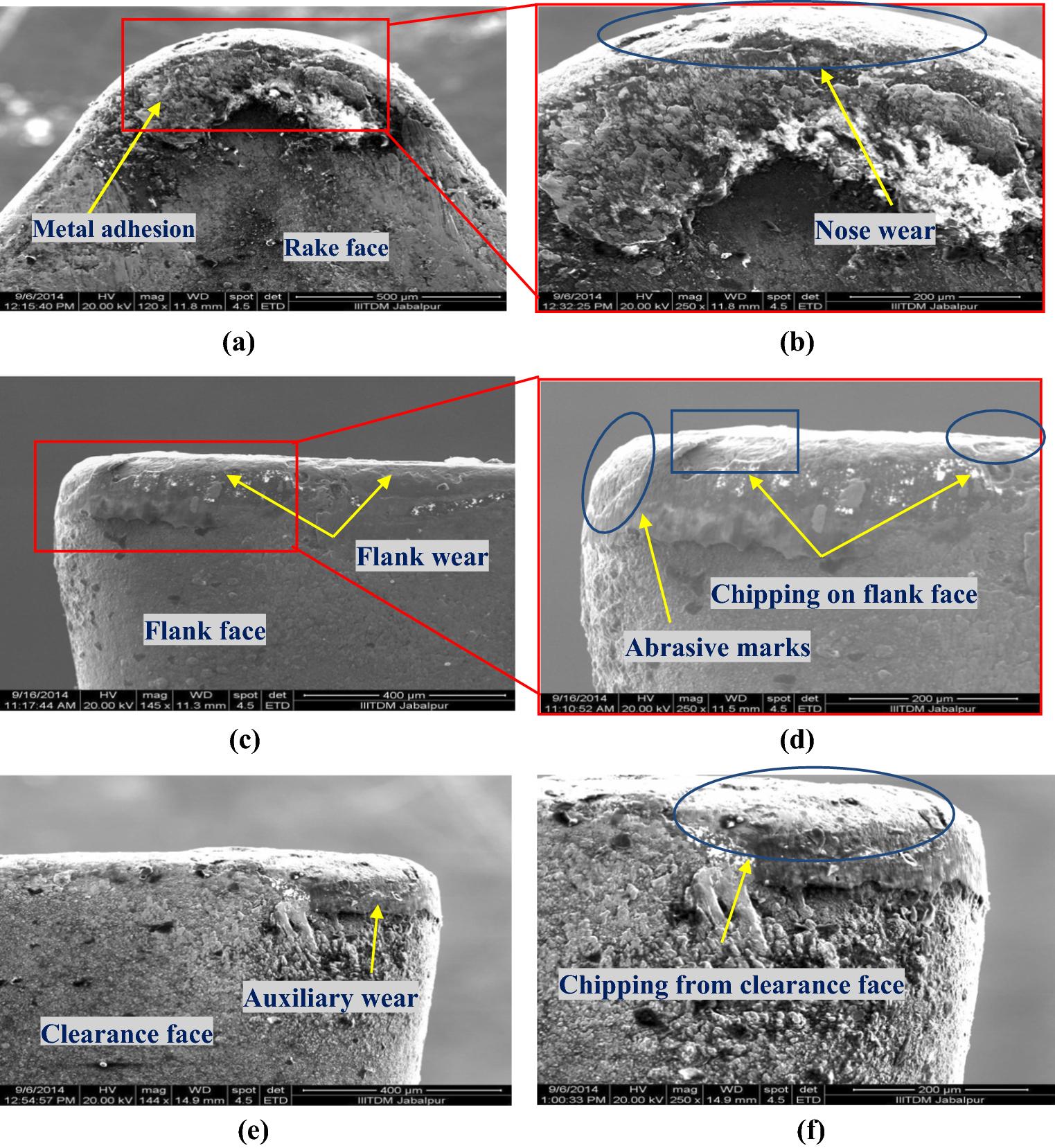 Influence of coconut oil on tribological behavior of carbide