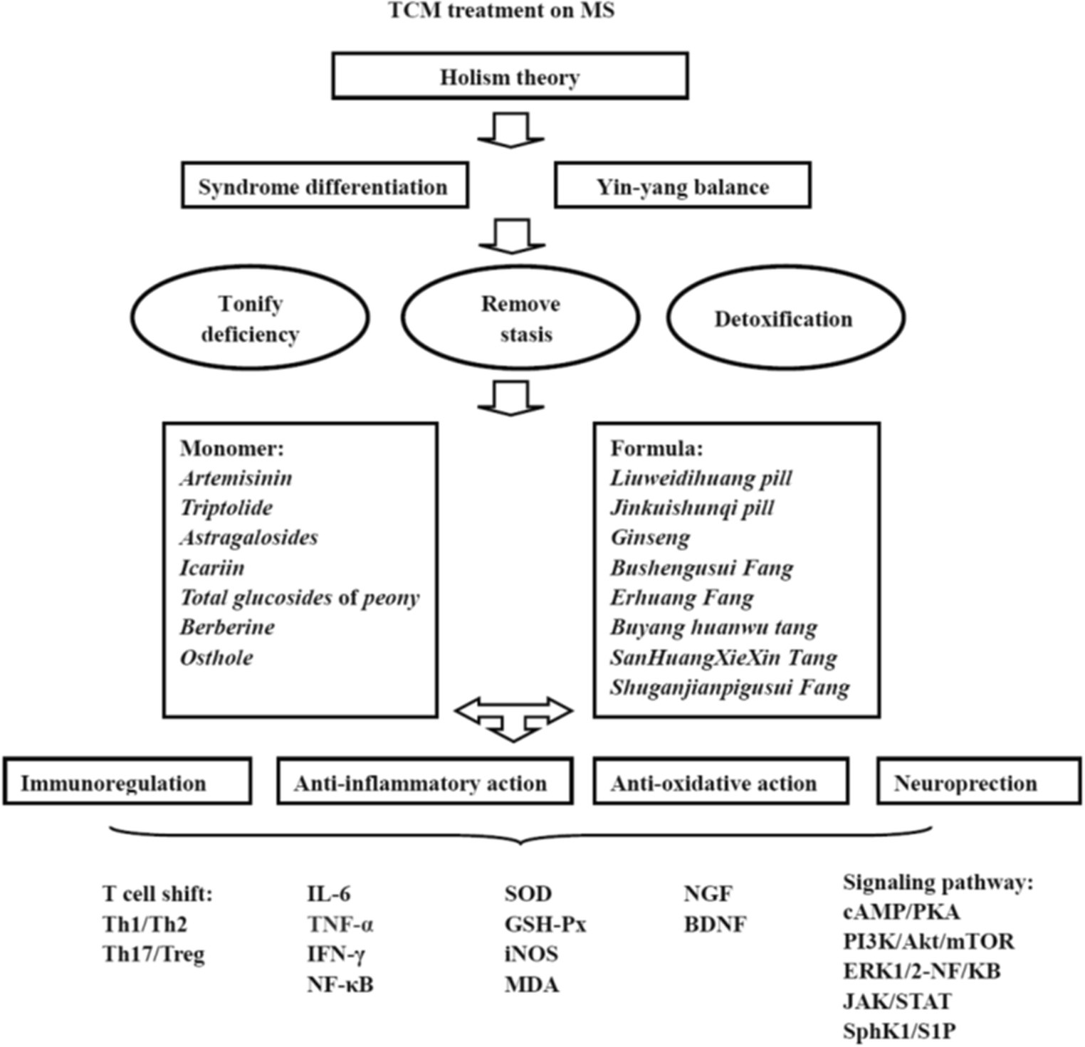 Traditional Chinese Medicine in Multiple Sclerosis: Theory