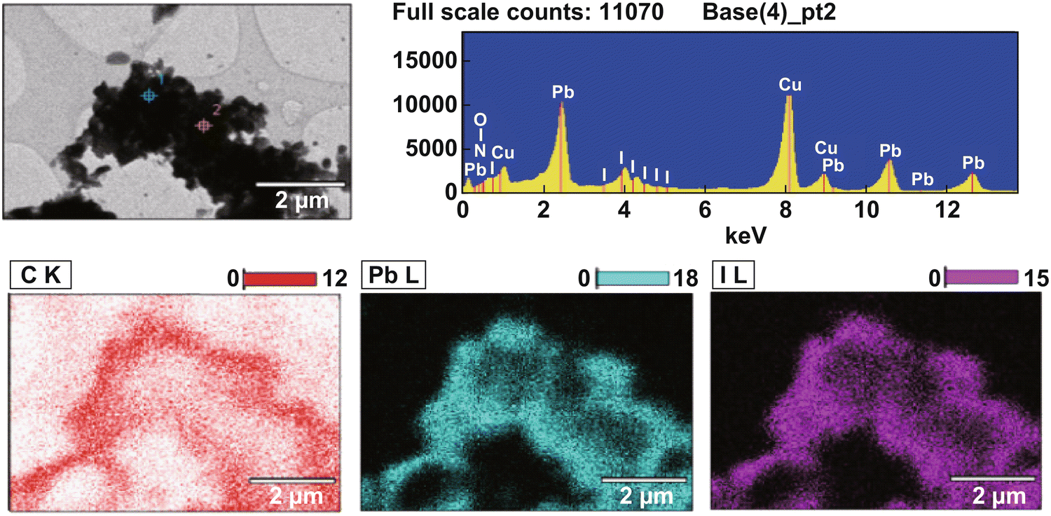 Recent Advances in Synthesis and Properties of Hybrid Halide
