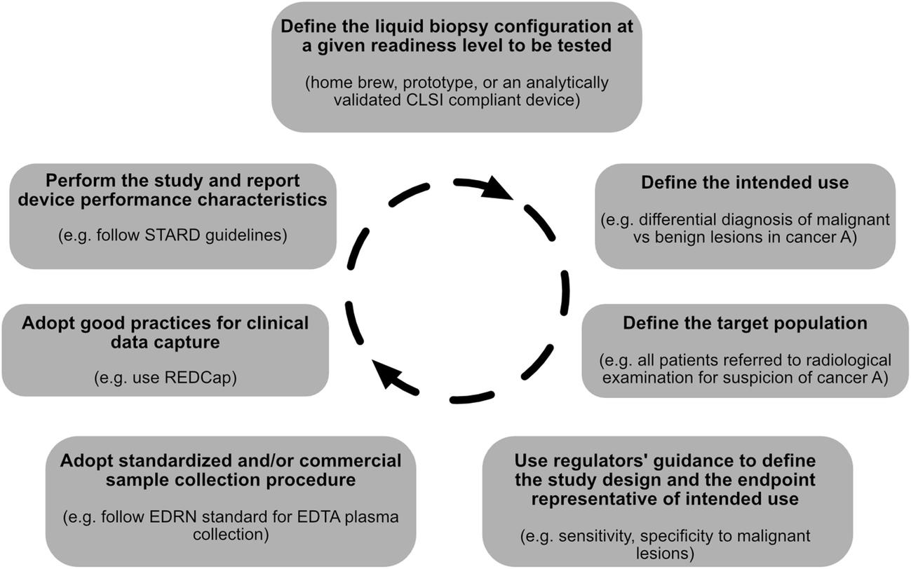 The Translational Status of Cancer Liquid Biopsies