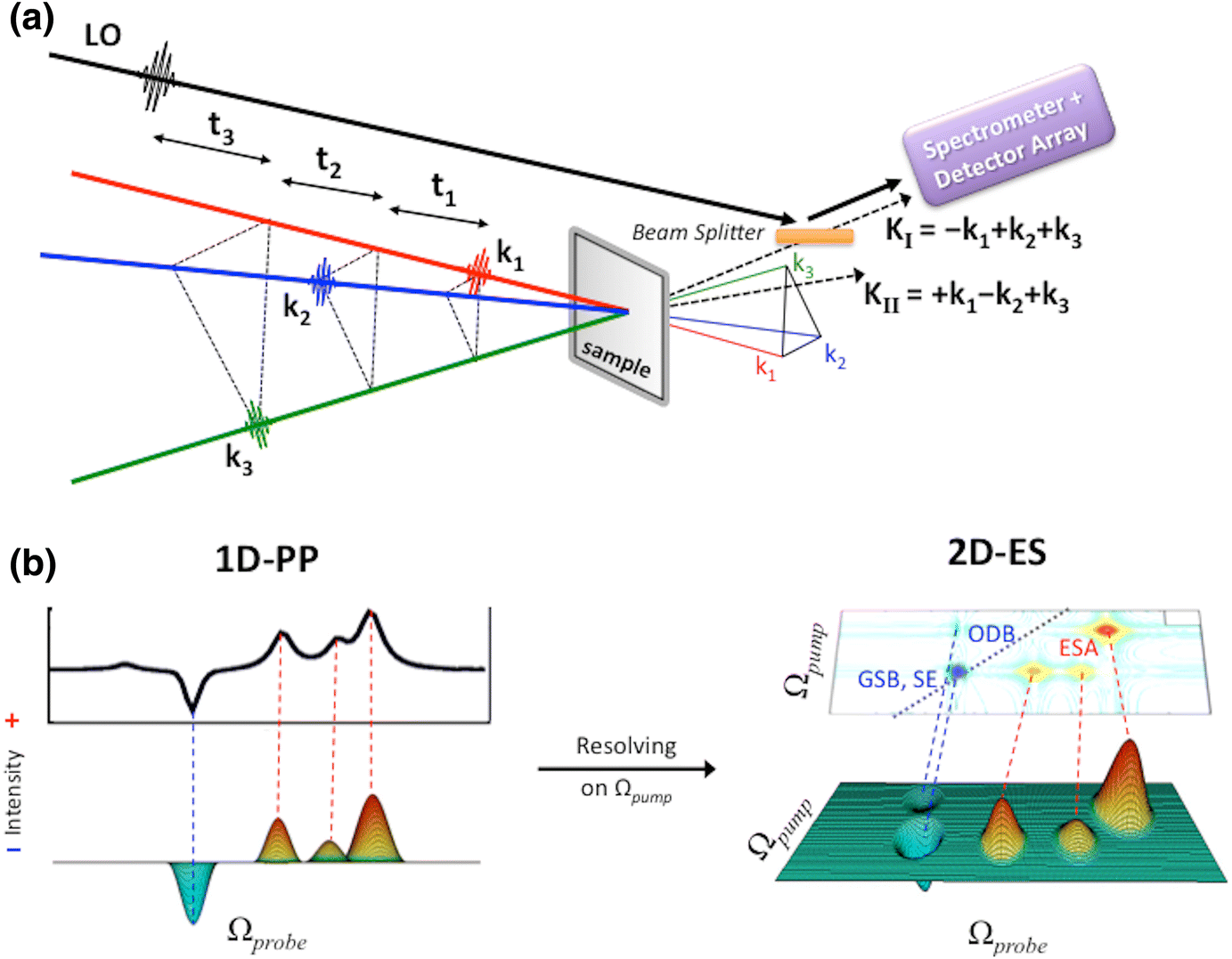 Towards Accurate Simulation of Two-Dimensional Electronic