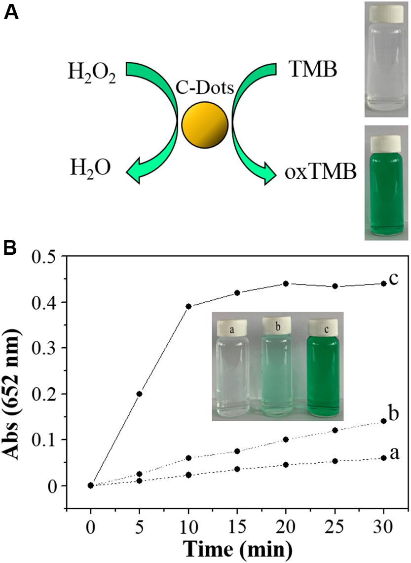 Carbon Dots as Artificial Peroxidases for Analytical