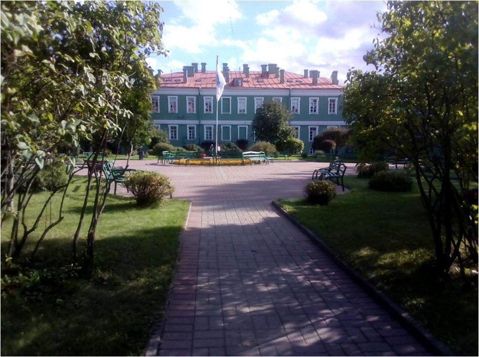 Walking in St  Petersburg—Vienna Walks Continued   SpringerLink